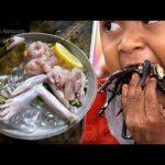 Te atreverias a comerte alguno de estos animales vivos