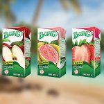 Boing-Tetra-Pack-sabores